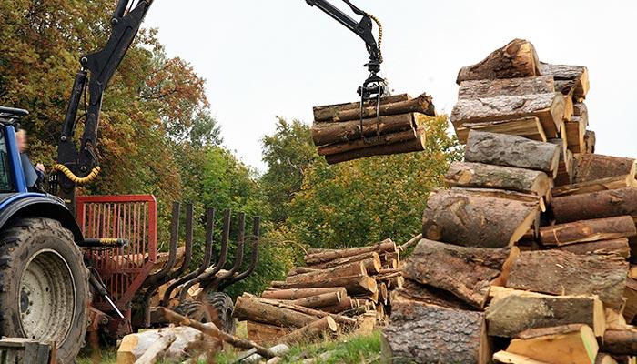 Entreprise de travaux forestiers à Pau